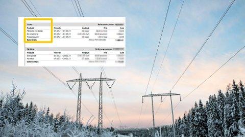 KRITISK: Håkon Dyrnes mener de store strømselskapene slipper unna med en rekke pristriks som ikke vises i strømregningen. Foto: scanpix/Halvor Ripegutu