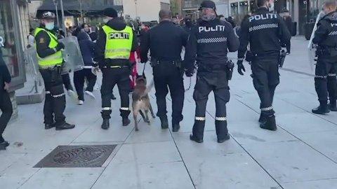 Politi fra hele Østfold ble sendt til Fredrikstad for å få kontroll over situasjonen 17. mai.