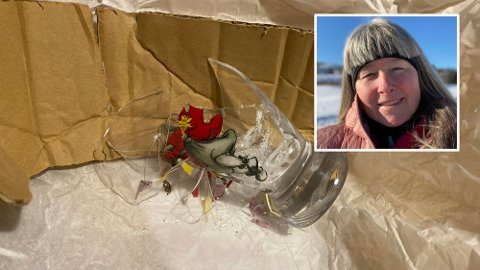 KNUST GLASS: Dette var synet som ventet Mari Anne Engen da hun åpnet opp pakken sin levert av PostNord.  Foto: Privat