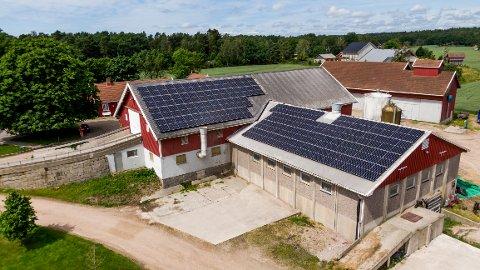 Nå produseres det strøm så det monner i Torsnes. 380 kvadratmeter med solcellepanel er på plass på Humlekjær gård.