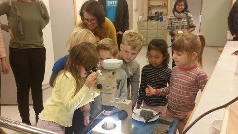 SMÅ FORSKERE: – Å jeg ser svarte prikker! Er det bakterier?, undrer et av barna når de får se i mikroskop