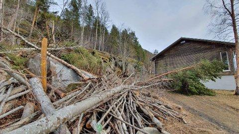 RASTE: Ved 04-tida natt til søndag våket Markus Torstein Eriksson av at en diger steinblokk raste ned fjellsida og landet i hagen hans i Skjomen.