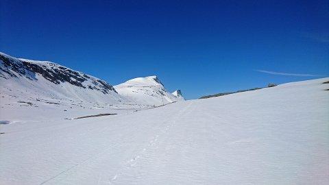 FRIKJØRING: Futurum mener Skjomfjellet kan være et aktuelt sted for frikjøring med snøscooter.