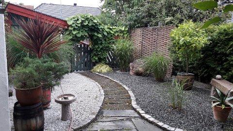STAUDE: Dette er fra min mors hage i Horten. Prydgres og stein er vakkert sammen.