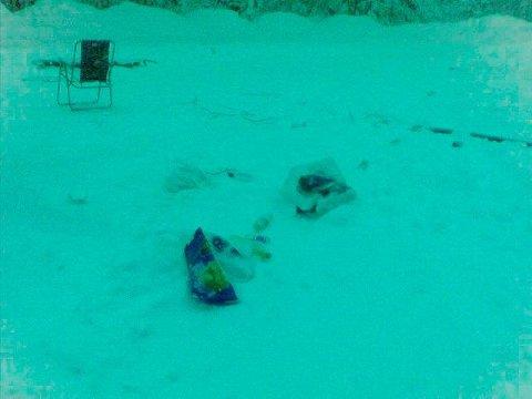 Søppel: Ingen hadde brydd seg med å rydde opp etter festen natt til lørdag. Mange la merke til griseriet. Leserfoto