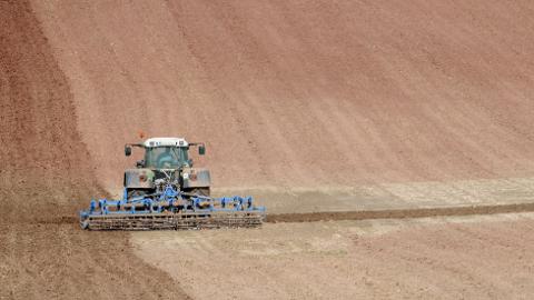 Avstanden er stor når forhandlingene om jordbruksoppgjøret fortsetter torsdag, melder partene. Foto: Frank May / NTB scanpix Foto: Frank May