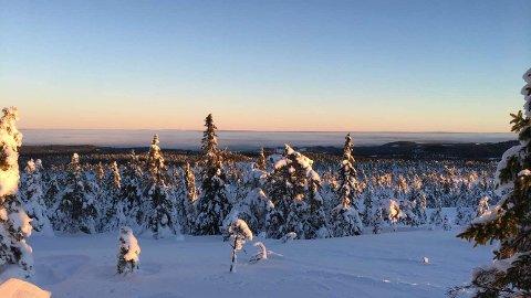 VINTERLANDET: Sola får vi neppe se før søndag, men da ligger det også an til en eventyrlig dag i vinterlandet. Her utsikt fra Eidsfjellet i Våler - over Solør, innover Finnskogen og Sverige.