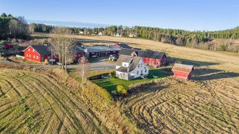 NYE FOLK PÅ TUNET?: Gården Repshus, et par kilometer fra Skotterud sentrum, har tradisjon for svinehold. Nå søkes nye eiere. Prisantydningen er på 5,95 millioner kroner.