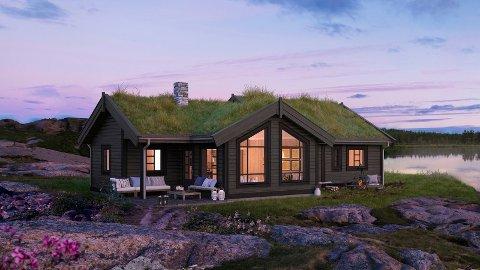 Hyttetomtene på Svingen Vest hytteområde har solgt godt de siste månedene.
