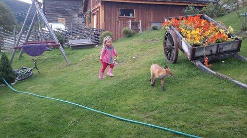 Maria jager Mikkel Rev.