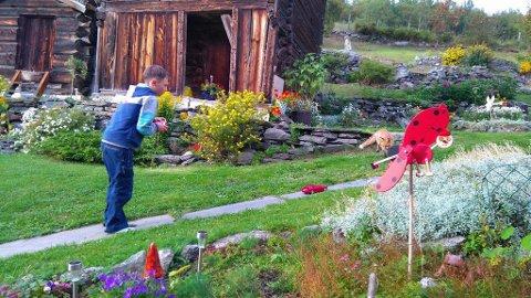 Mikkel leker gjerne med radiobiler sammen med Daniel.