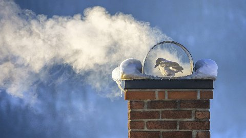 VARMESTUE: Godt med vedfyring. Foto: Øystein Nordås