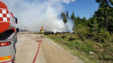 En kvisthaug tok fyr i Hedmark tirsdag. Oppland har ikke hatt noen skogbranner i vår ennå, men alle offentlige aktører er i beredskap..