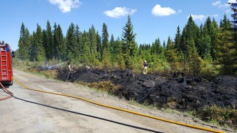 Brannvesenet rykket ut til brannen i Ringsaker i slutten av mai. Det var ett av mange branntilløp som heldigvis endte uten dramatikk i sommer.