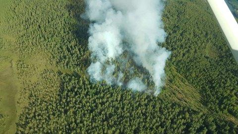 Skogbrannen mellom Sel og Lalm 11. juli 2018 la omlag ødela omlag fem mål med skog.