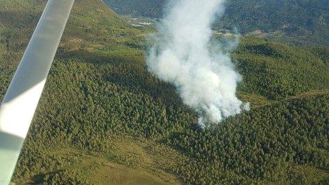 Over 100 skogbranner i Norge førte til at nødnumrene gikk varme torsdag. Bildet er fra brannen på Lalm onsdag.