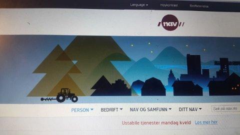 NAVs nettside - ett nettsted, mange ulike tjenester og brukere