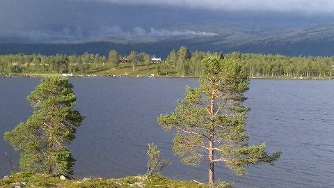 Lyngbrannen på Kvamsfjellet ble slukket av regnet.