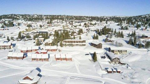 REAGERER PÅ FORTETTING: Sjusjøen Invest AS ønsker å fortette Sjusjøen sentrum, noe Ringsaker kommune er positive til. Flere hytteeiere reagerer på mer utbygging.