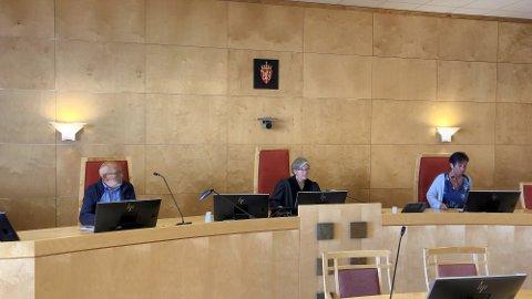 TINGRETTEN: Tingrettsdommer Elisabeth B. Løvold (midten) og meddommerne Svein Garmo og Irene Bredal Pryhn skal dømme i saken der en mann i 30-årene står tiltalt for medvirkning til flere overgrep mot barn.