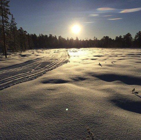 LYGNA: Det er gnistrende forhold på åsene på Hadeland. Mange mil med skiløyper venter på å bli brukt.Leserfoto: Emil L