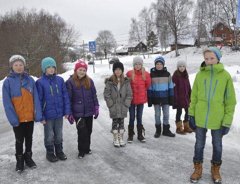 ELEVRÅDET: Ola Hjelmås Molden, Lasse Morten Rustad, Marte Panken, Elen Biløygard Botten, Martine Skarpen, Andreas Lindstad Gutevall, Vilde Morstad Engli og Oskar Gisleberg.