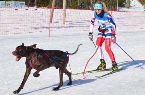 VIL TIL VM: Ann-Karin Huseby, her med hunden Fant, håper at hun og Bolt kvalifiserer seg til VM etter helgens NM- løp og VM-uttak.