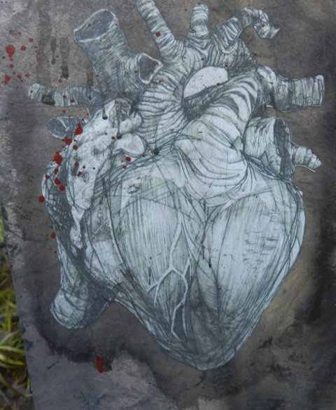 Ødelagt hjerte: Dette hjertet berører haldenseren mye.
