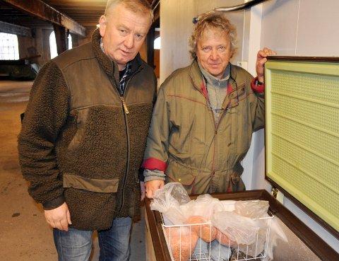 Her ligger 40.000 befruktede egg i fryseren. - Vi var nødt til å dumpe dem, sier Bjarne Granli (til v.) og Rolf Ganerød. FOTO: ØIVIND KVITNES