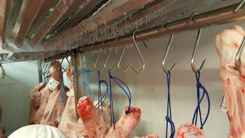 UHYGIENISK: Det dryppet møkkete vann og is fra kjøleaggregatet ned på de uinnpakkede lammekroppene da inspeksjonsmyndighetene fra Strömstad kommune besøkte BR Food på Svinesund.