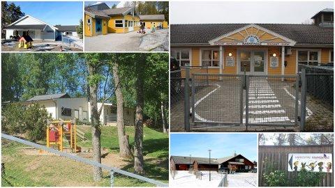 KAN BLI SLÅTT SAMMEN: Halden kommune har 5 kommunale barnehager i 6 forskjellige bygg. Rådmannen ønsker å utrede én stor kommunal barnehage i løpet av våren 2019.