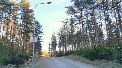 I 2018 brukte Halden kommune 150 000 – 200 000 kroner til drift og vedlikehold av gatelys på private veier.