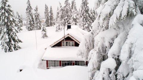HYTTEDRØMMEN: Titusenvis av nordmenn drømmer om å kjøpe hytte ved sjøen eller på fjellet. Det finnes imidlertid nok av grunner til at du bør la være. Foto: Tore Meek (NTB scanpix)