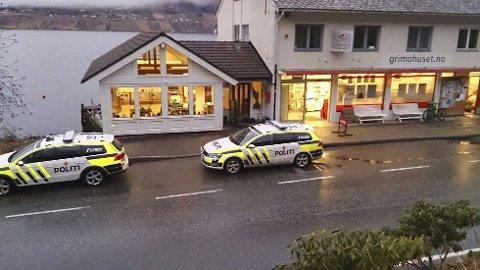 Raskt på pletten: Politiet rykket ut til Grimo lørdag. Foto: Stein hauge aarekol