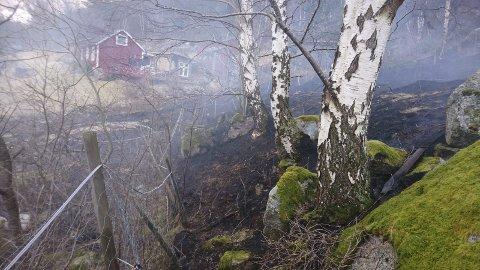 Tett på fritidsbustad: Ein fritidsbustad på Stavanes i Eidfjord var ikkje i akutt fare, sjølv om han ligg nær der det oppstod grasbrann torsdag føremiddag. Vindretninga er å takka, meiner varabrannsjef Frede Olaussen.