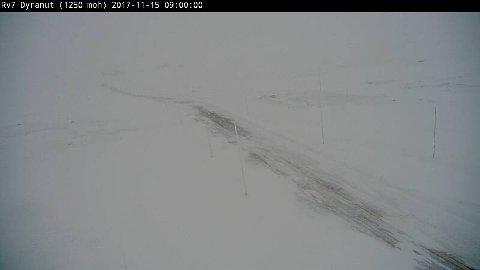 DYRANUT: Heftig snødrev gjorde sikten vanskelig ved Dyranut på Rv.7 - Hardangervidda i dag tidlig.