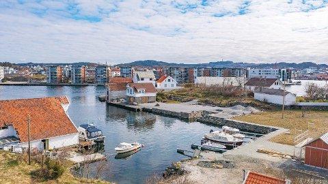VIKTIG FOR BYEN: – Vibrandsøy er viktig for Haugesund, og da er det viktig hva som blir bygget her, sier byantikvar Trygve Eriksen jr.