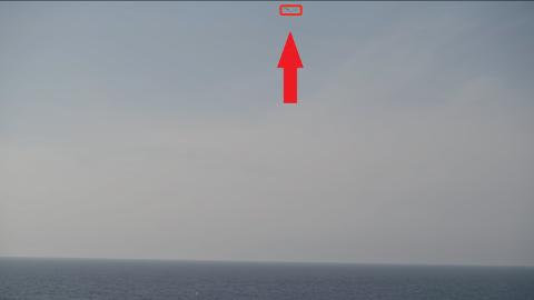 HISTORISK: Denne fuglen visste neppe hva den ble med på, da den seilte på vinden utenfor Karmøy nylig.