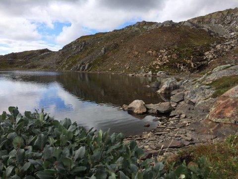 Øyfjellet: Den ekstremt fine sommeren gjorde at isbreen man passerer på vei til Stortuva på Øyfjellet var borte. foto: asbjørg sande
