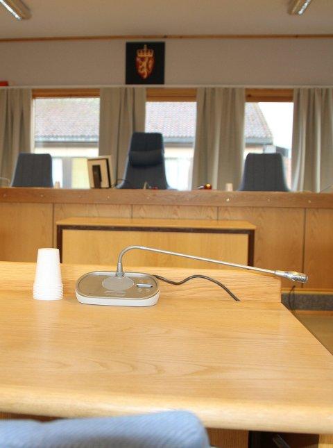 Fartssynder ble idømt samfunnsstraff av Brønnøy tingrett.