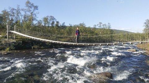 NATUROPPLEVELSER: Det er nok å velge i blant de mange fjelltrimmene på Helgeland. Det begynner å bli bart i fjellet i Hattfjelldal, og det er mulig å gå til fots til postene i fjelltrimmen. Bilder er fra brua på tur opp til Brunreinvatn og elva heter Rauvasselva. Foto: Privat