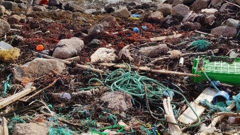 Mye av søppelet de finner i fjæra og på strender, er plast, tauverk og blåser.