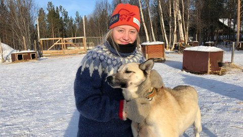 KLAR FOR TUR MED HUNDEN SINGEL: Finnmarksløpet beskrives som noe av det aller hardeste en hundekjører kan delta på, og i år er turen som Hanna Lyrek håper å gjennomføre sammen med blant annet hunden Singel , 1195 kilometer lang. – Jeg grugleder meg, sier 18-åringen