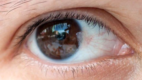 BRUK SOLBRILLER: Det er anbefalt å bruke solbriller også på vinteren - uansett om det er sol eller ikke.  Foto: Wikipedia Commons
