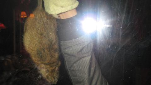 SKADER: Det er rotter langs kysten. Denne ble tatt i 2014 på Rolvsøy.