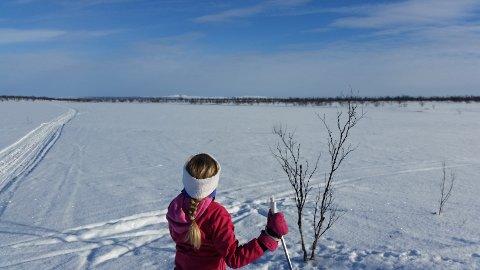 AILIS PÅSKEPARADIS: Aili Keskitalo tar gjerne med seg familien på skitur til hytta i Vuorášjávri i påsken.