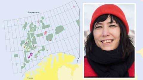 IKKE HOT LENGER: Forsker Berit Kristoffersen har jevnlig kontakt med oljeselskapene om Barentshavet. Hun forteller om et mer og mer lunkent forholdene til mulighetene i nord.