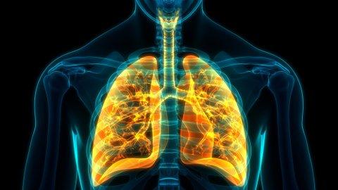 LUNGESYKDOM: Symptomene på kols er tung pust, økt slimproduksjon og hoste. Foto: magicmine