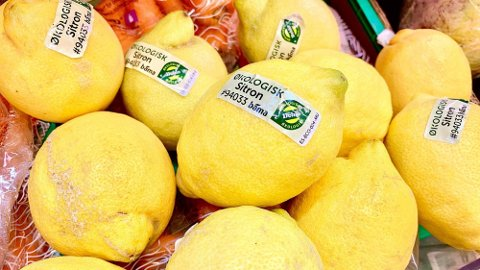 RÅDYRT: Du betaler opptil tre ganger mer for å kjøpe økologiske grønnsaker. Foto: Lena-Christin Kalle.