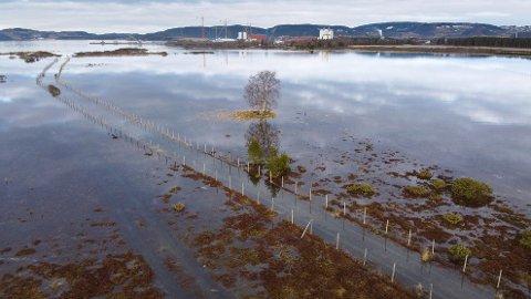 FARE FOR FLOM: Det er ventet store vannmengder i store deler av Trøndelag den kommende tida. NVE har sendt ut gult farevarsel for både jord-, sørpe- og flomskred. Illustrasjonsfoto.